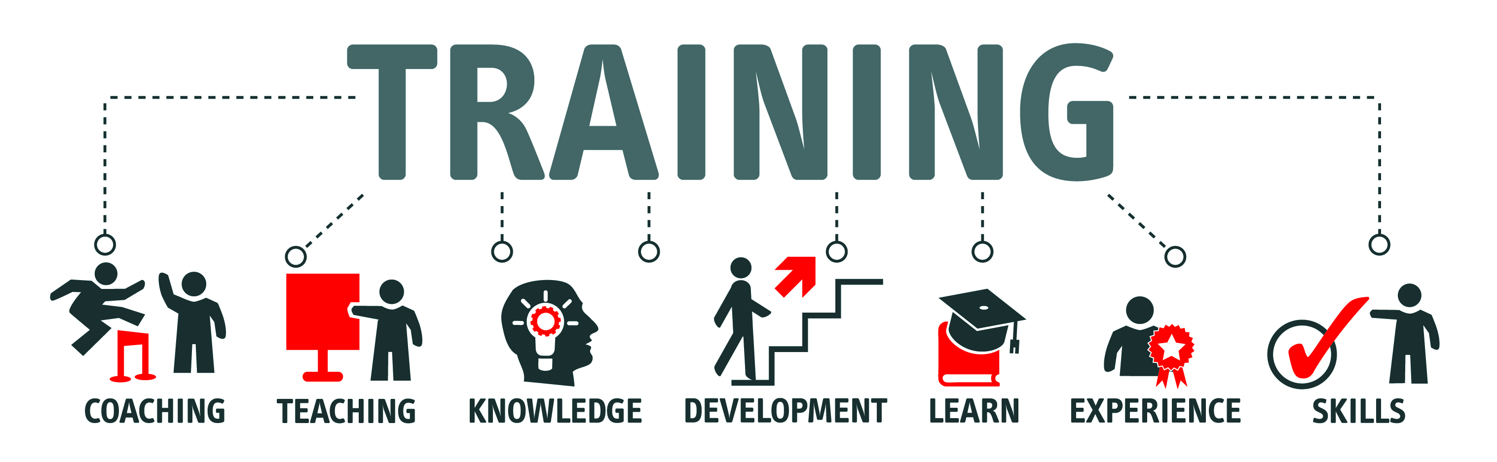 Training graph down to coaching teaching knowledge development learn experience skills